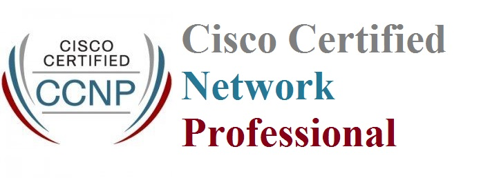 CCNP Training In Velachery Chennai, CCNP Course In Velachery Chennai