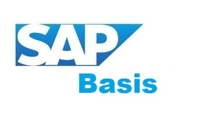 SAP Basis Training In Velachery