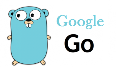 Google Go Training In Velachery