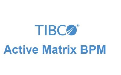 Tibco Active Matrix BPM Training In Velachery